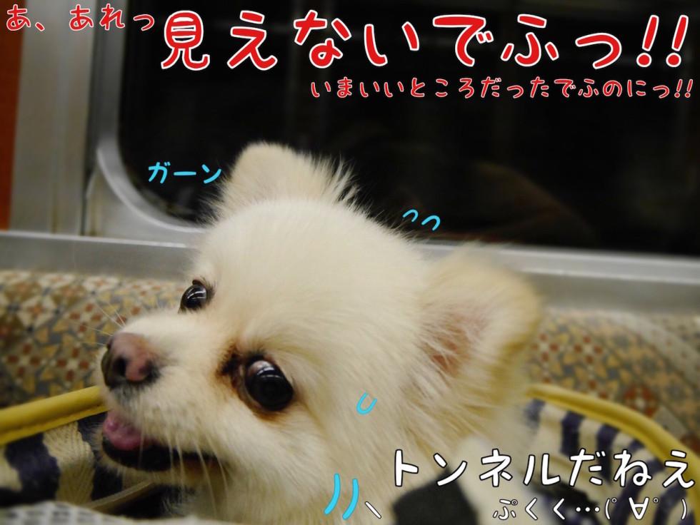 箱根登山電車トンネル