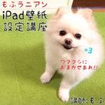 iPad壁紙設定講座