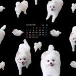 iPadウォールカレンダー11月 黒
