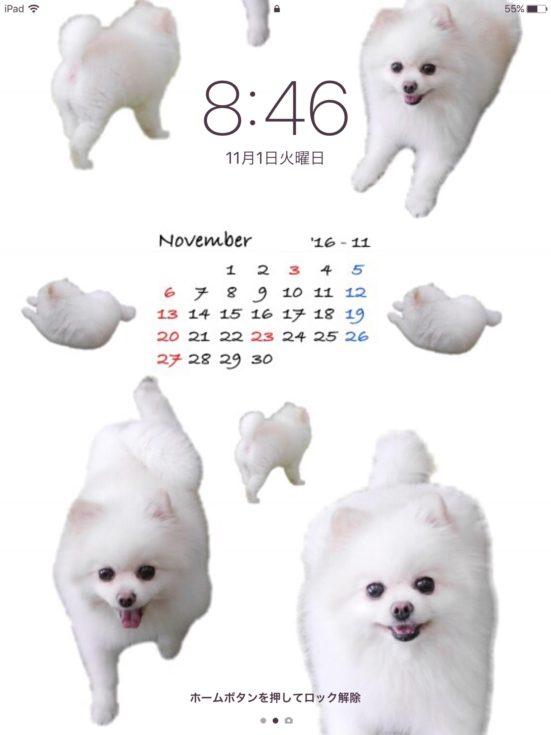 iPad壁紙カレンダー11月たて
