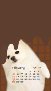 携帯壁紙2017年2月ミルクチョコもふ