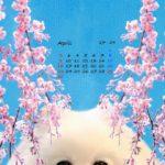 スマホ壁紙2017年4月快晴桜