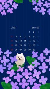 携帯壁紙 スマホ壁紙 iphone壁紙 2017年6月 紫陽花  紺