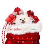 携帯壁紙2017年12月 クリスマスプレゼント