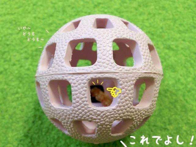 ささみを切ってボールの穴に入れるママちゃん: これでよし!