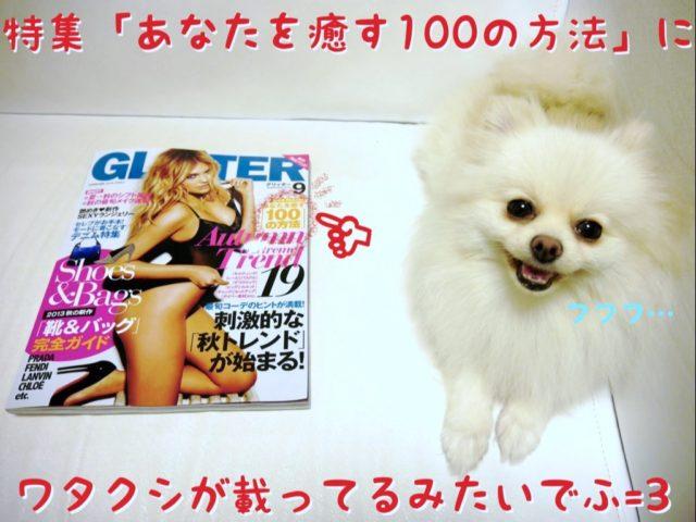 雑誌「GLITTER」と横並びに座るもふ: 特集「あなたを癒す100の方法」にワタクシが載ってるみたいでふ!