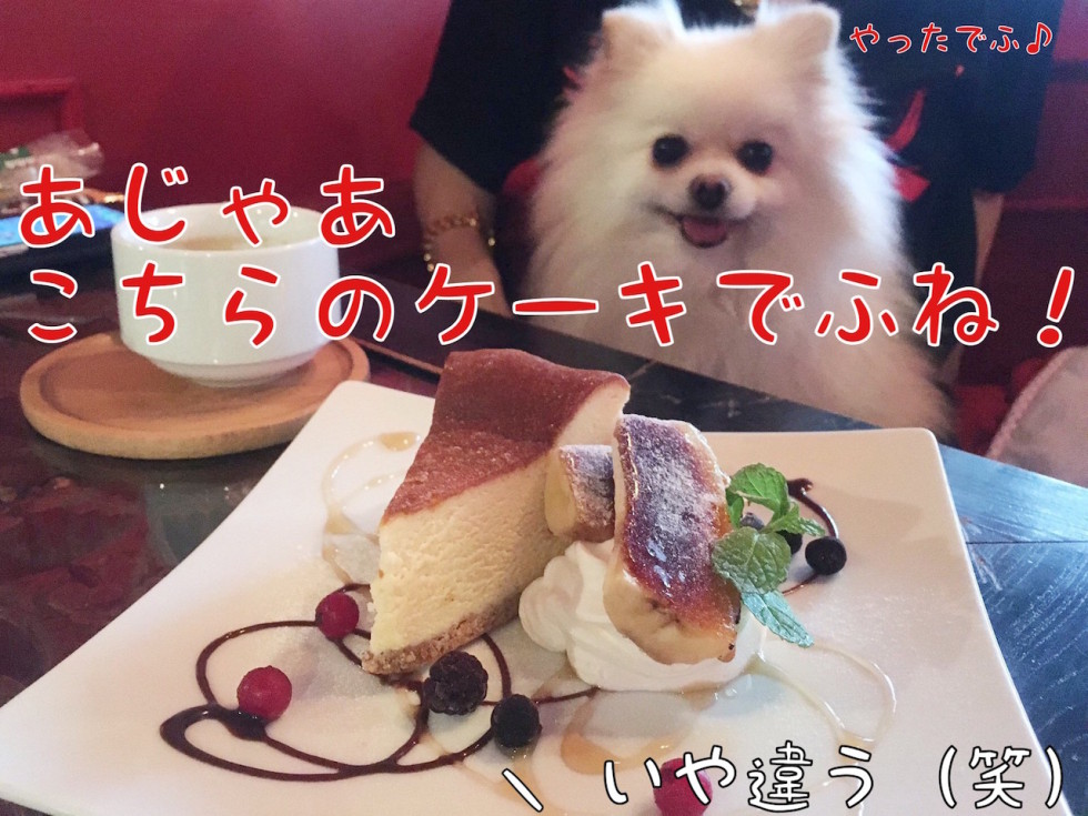 ケーキ?!